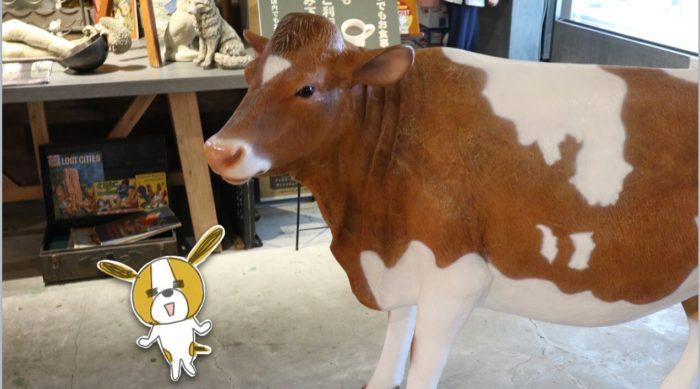 入口にいた牛さん