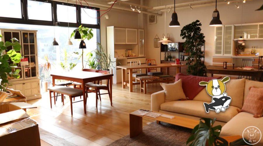 ライフスタイルショップ CARNA 1階 家具コーナー