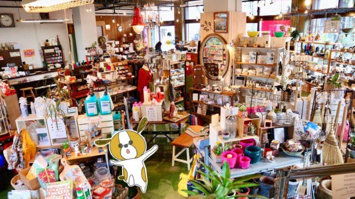 高知の雑貨店uf(ウフ)の雰囲気や店内の様子