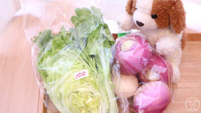 シリウスファームで買ったお野菜