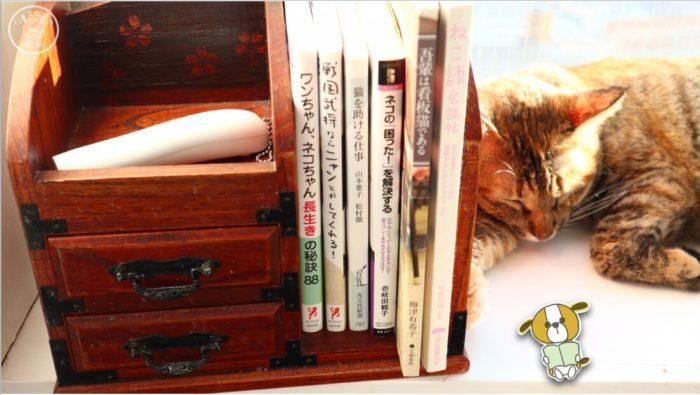 moco-mocoの本