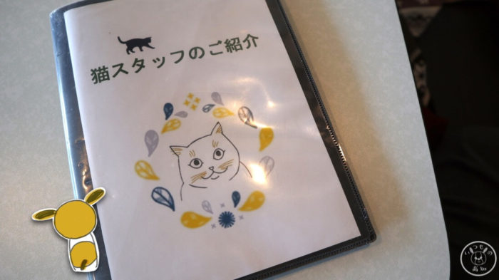 moco-mocoの猫スタッフの紹介
