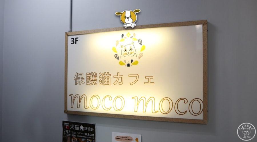 保護猫カフェmoco mocoの看板