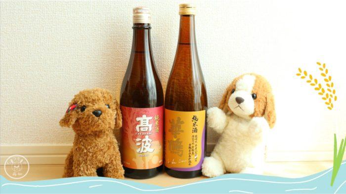saketakuで届いたお酒「高波」と「華鳩」