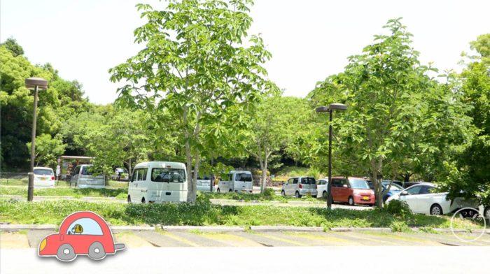 牧野植物園 正門前の駐車場
