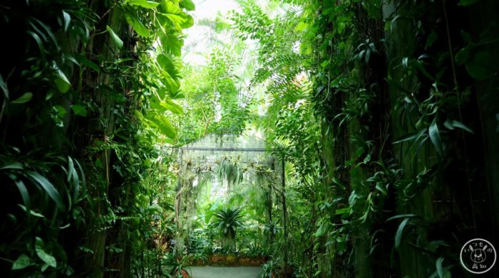 温室の入り口