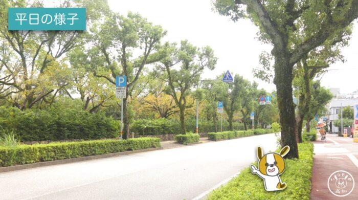 城西公園の西側(平日の様子)